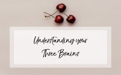 Understanding your three brains